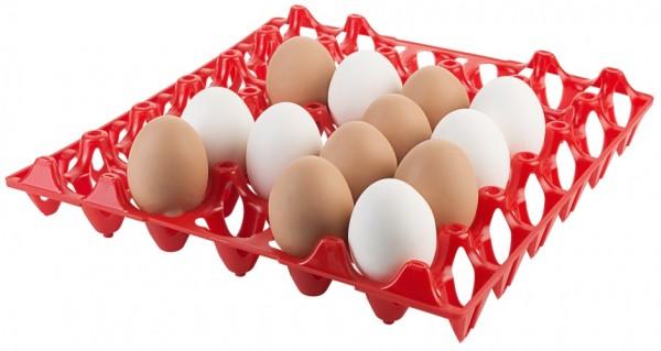 Tablett fuer 30 Eier, rot