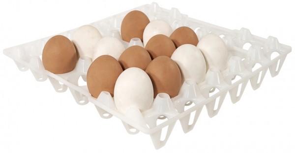 Tablett fuer 30 Eier, weiss